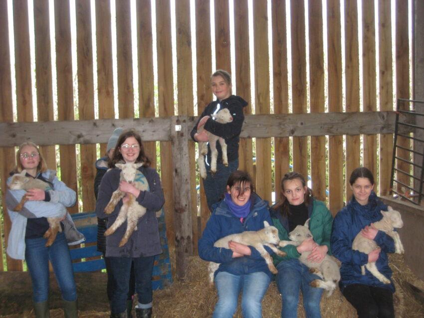 Wye Community Farm - farm club 117
