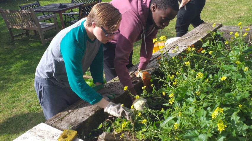 Residents at Cabrini House planting the donatd flowers and vegetables